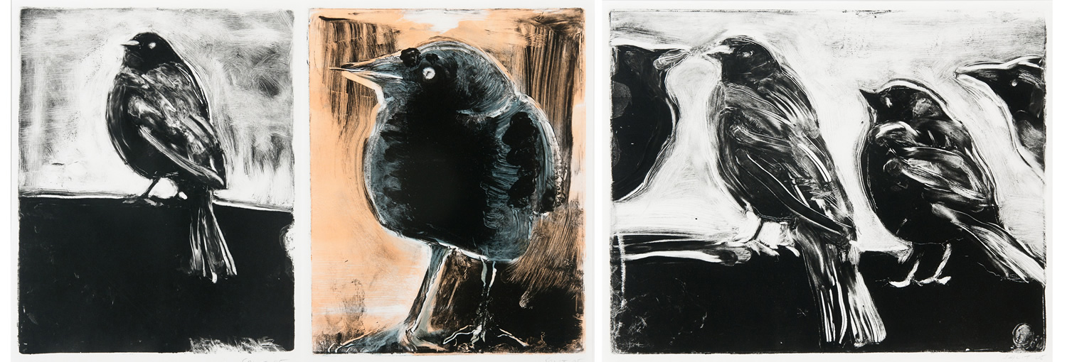 Starling prints for the holidays!