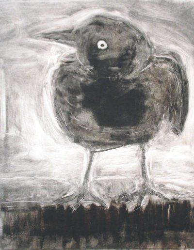 starling 10
