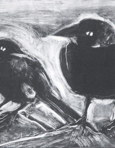 starling 12