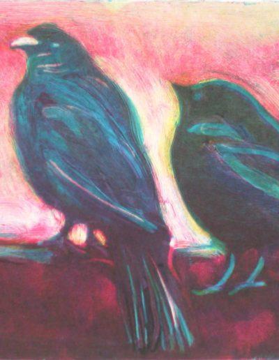starling 7